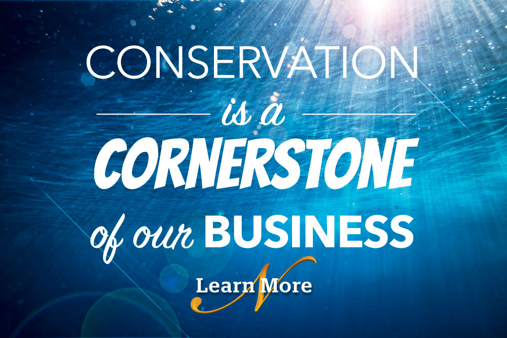 Conservation is a cornerstone of our business