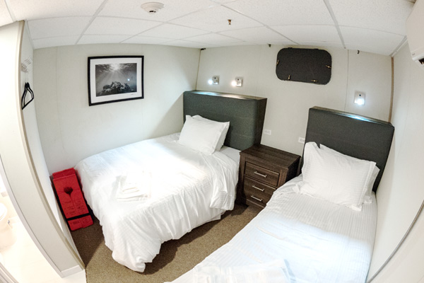 Affordable and comfortable stateroom on the Nautilus Belle Amie
