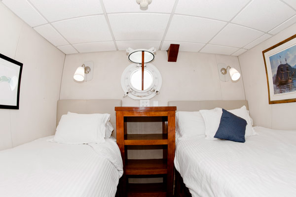 Affordable and comfortable stateroom on the Nautilus Explorer