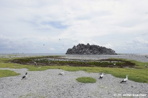 clipperton rock lagoon
