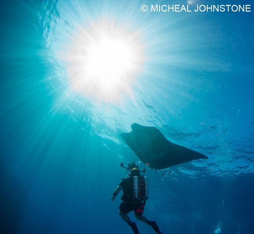 519-Micheal-Johnstone