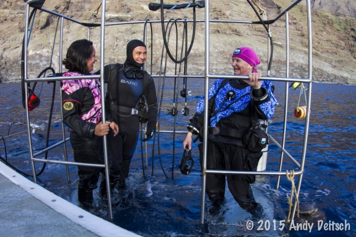 guests on the Nautilus Belle Amie in our submersible cages at Guadalupe Island
