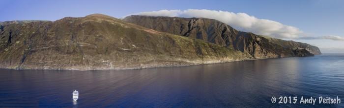 Guadalupe Island Nautilus