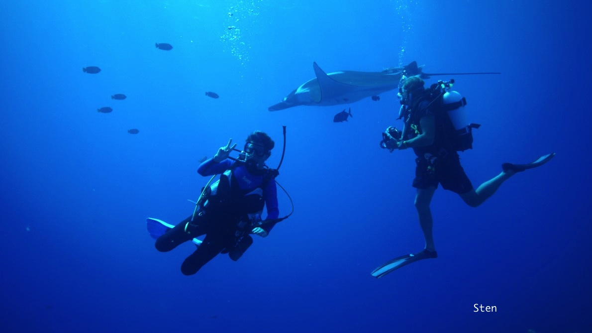 divers and giant manta