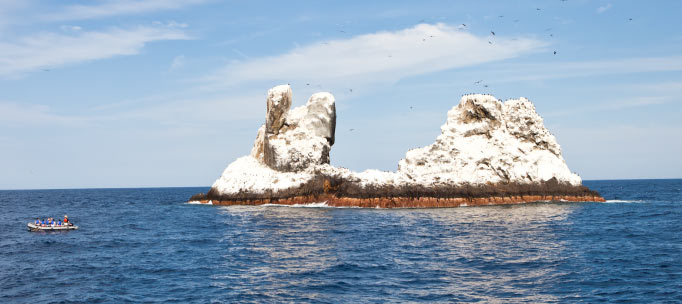 Skiff driving past roca partida, covered in birds and guano