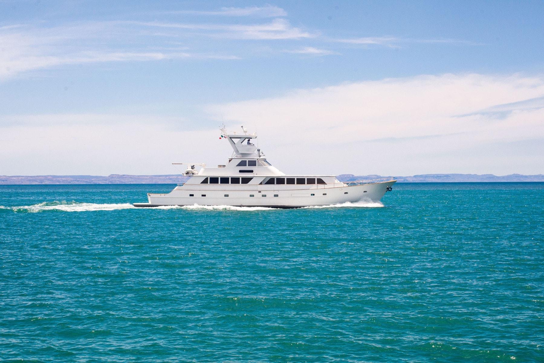 Nautilus Gallant Lady sur la mer de Cortez