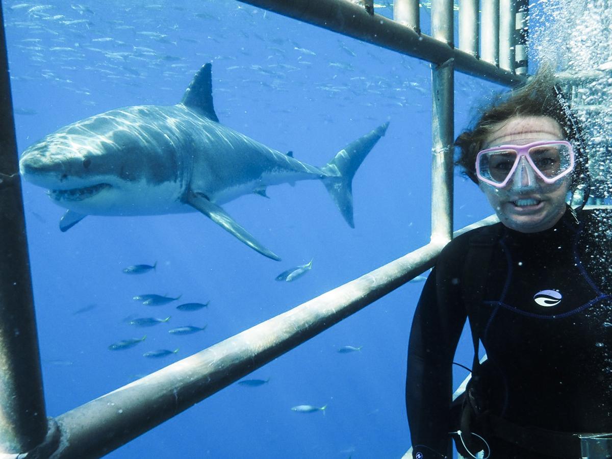 A smiling shark selfie