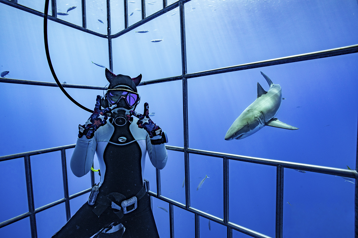 Shark selfies are the best selfies, photo by Sam Zhang