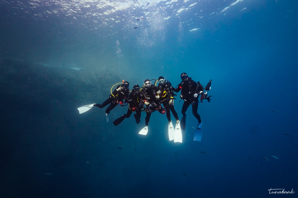 Dive at Socorro